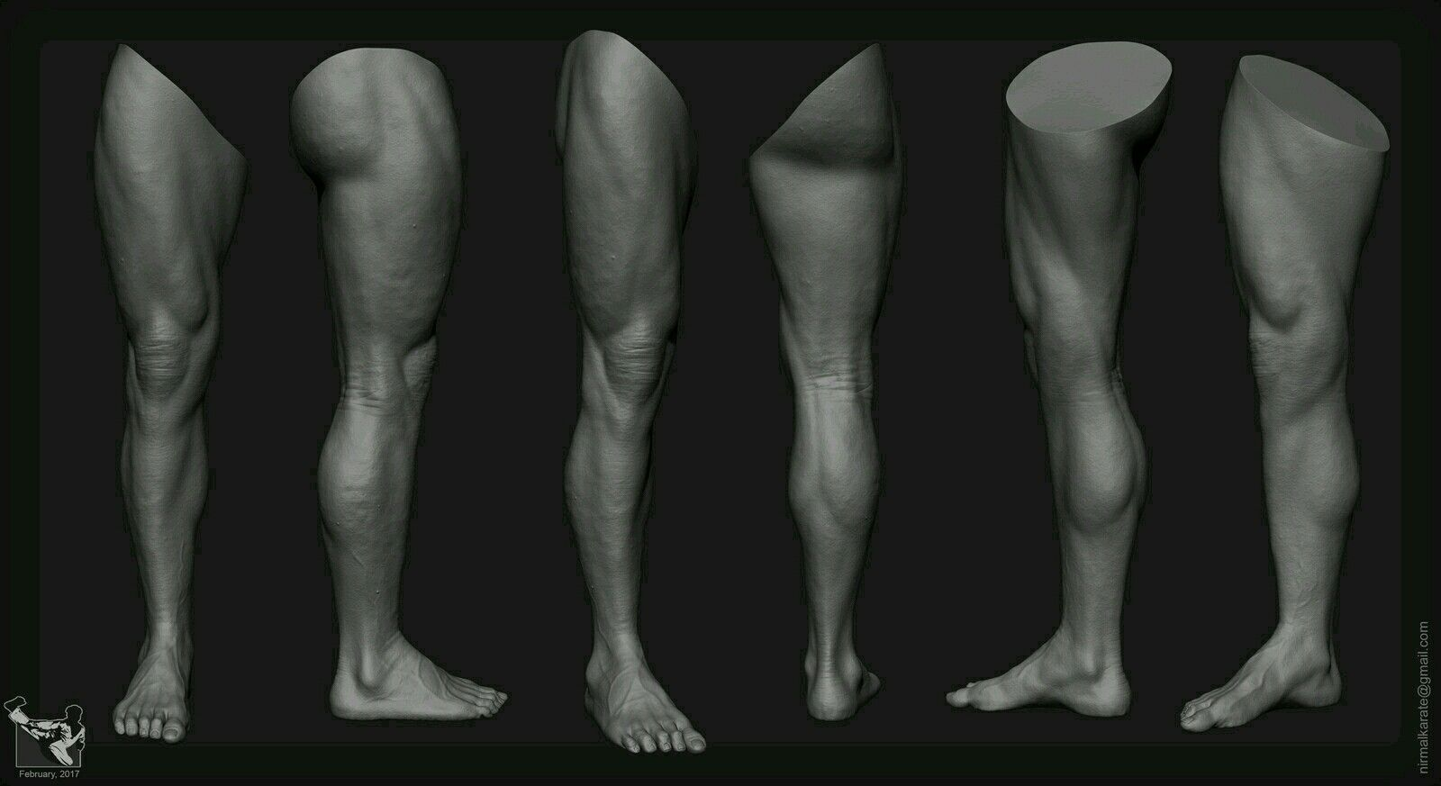 Pin von m auf human anatomy | Pinterest