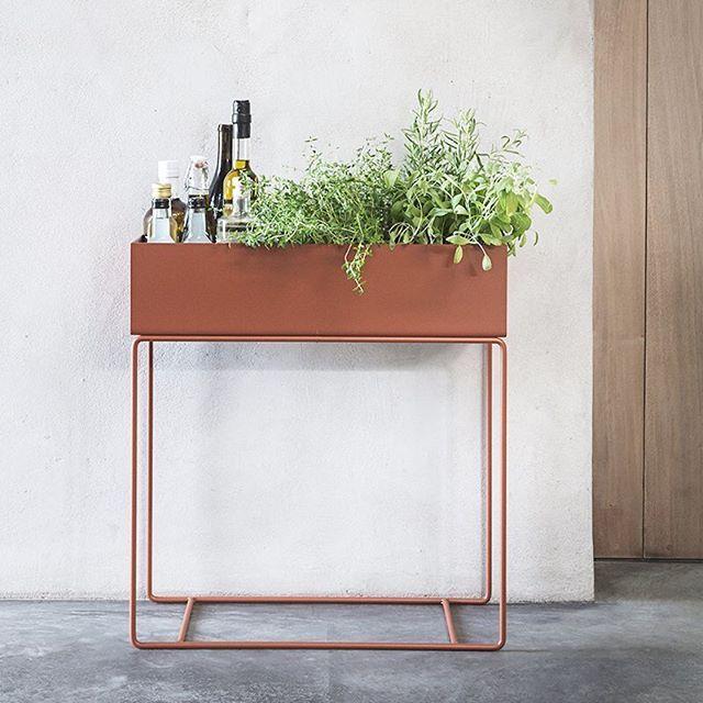 W E E K E N D #plantbox #ochre #ferm #herbs #plants #greenterior #greenisthenewblack @fermliving