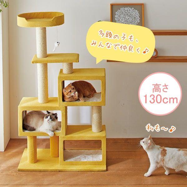 aishe キャットタワーマンション ペット用品の通販サイト ペピイ Peppy キャットタワー 子猫 ペット用品
