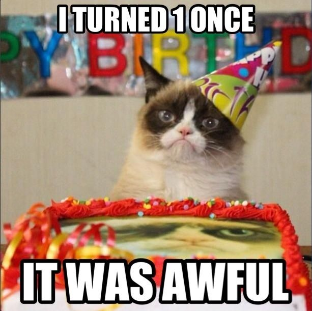 Happy 1st Birthday Grumpy Cat