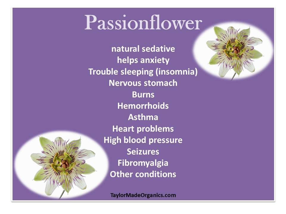 Benefits Of Passionflower Healing Herbs Natural Medicine Herbalism