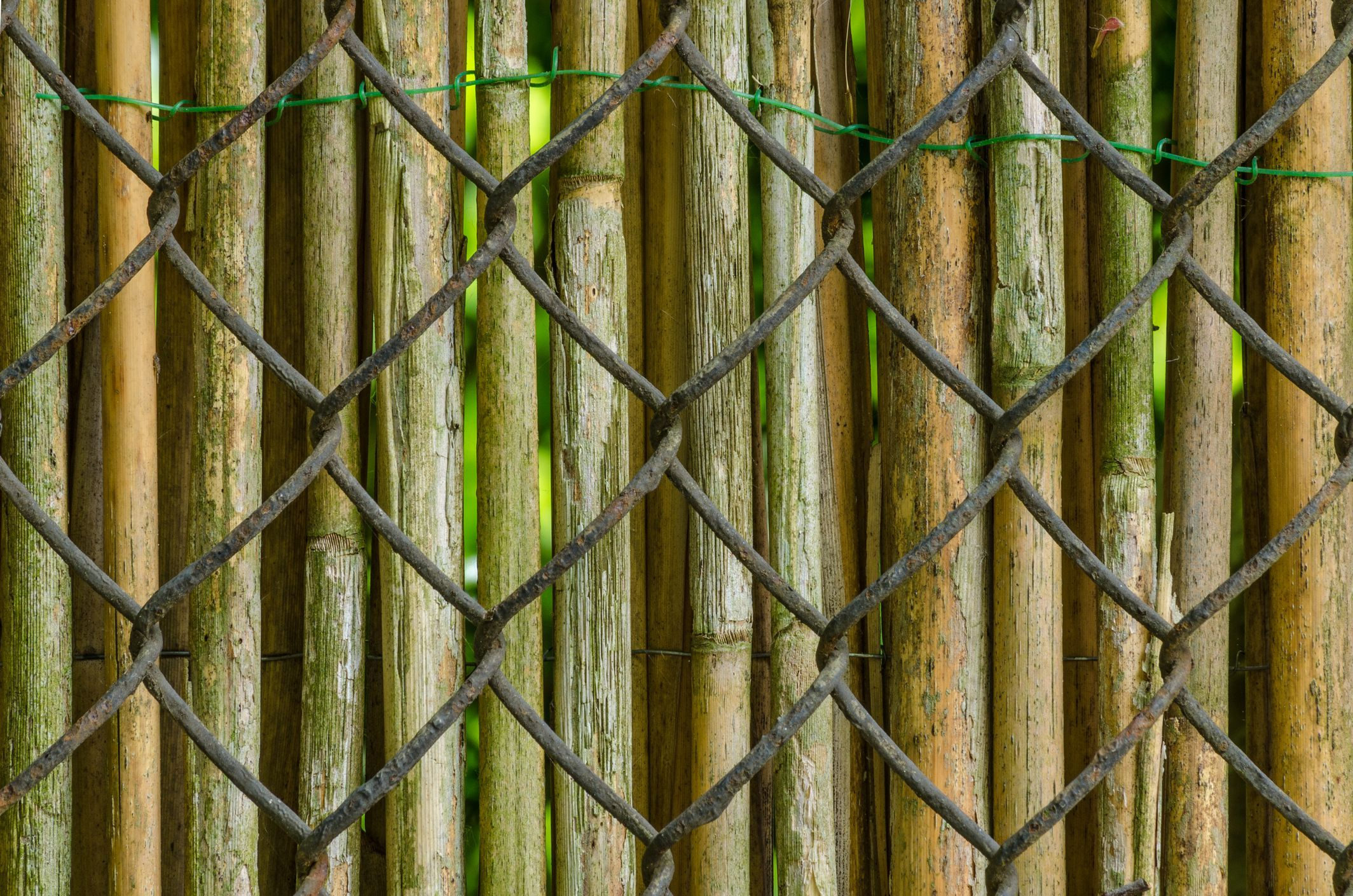 5 ways to cover up a chainlink fence chain link fence