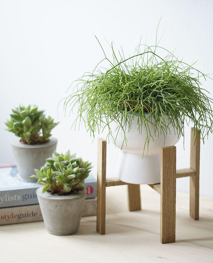 Diy Plant Stand Diy Ideen Ynas Design Blumenst 228 Nder