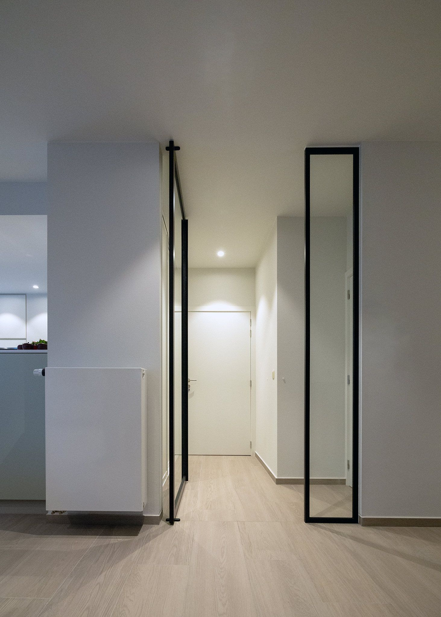 Glass And Aluminium Pivot Door With Fixed Glass Partition Right