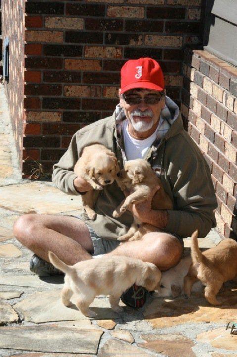 Randy Owen With Golden Retriever Pups America Band Country Rock