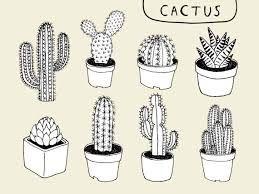 Resultat De Recherche D Images Pour Dessin De Cactus Facile A