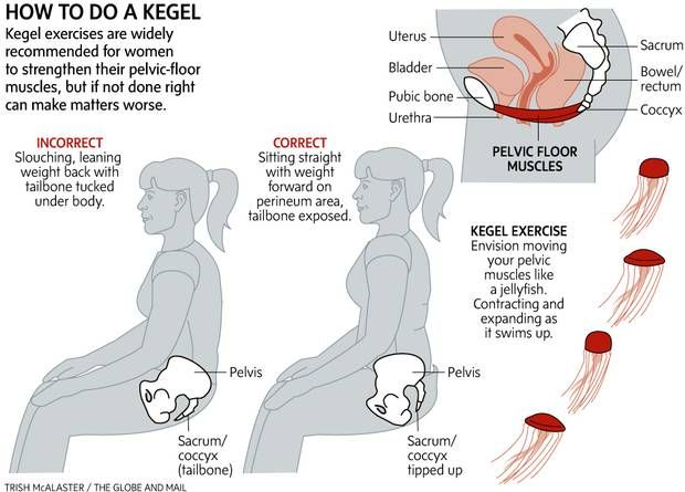 Kegels Graphic Exercise Like A Jellyfish