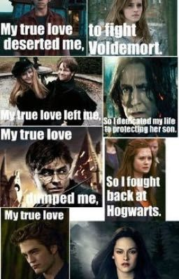 Hp Vs Twilight Harry Potter Twilight Harry Potter Vs Twilight Harry Potter Memes Hilarious
