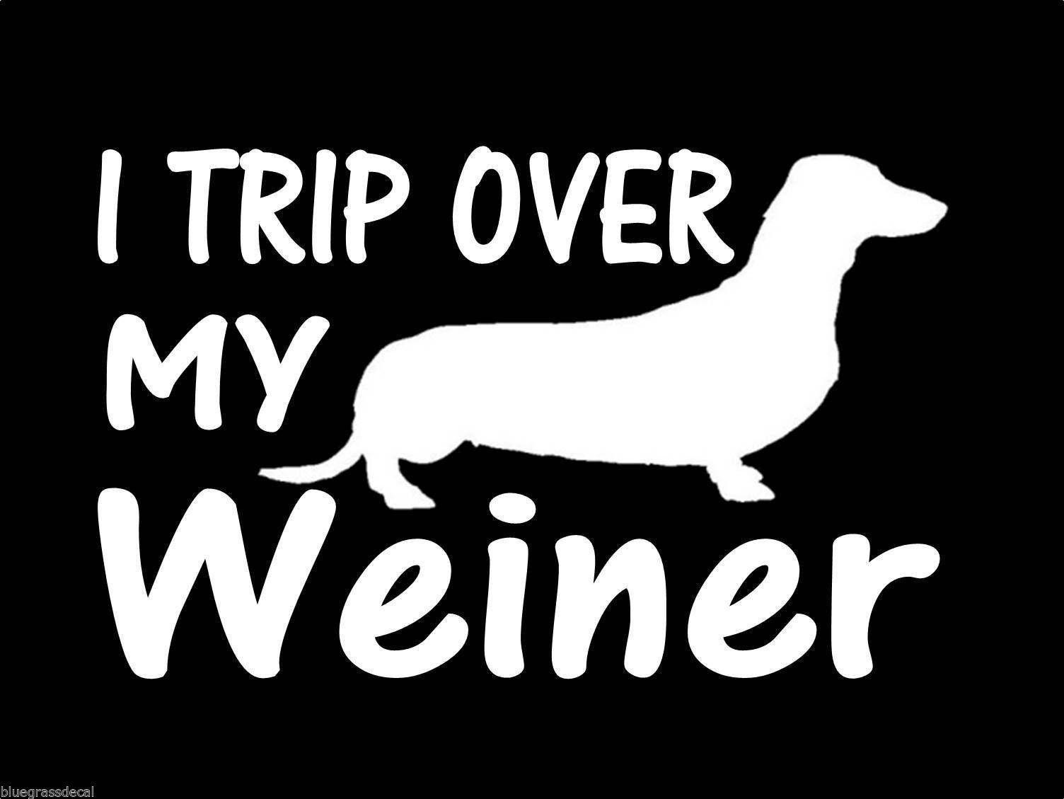 Amazon Com Trip Over My Weiner Dachshund Dog Vinyl Decal Sticker Other Products Vinyl Decal Stickers Dachshund Dog Dog Decals [ 1129 x 1504 Pixel ]