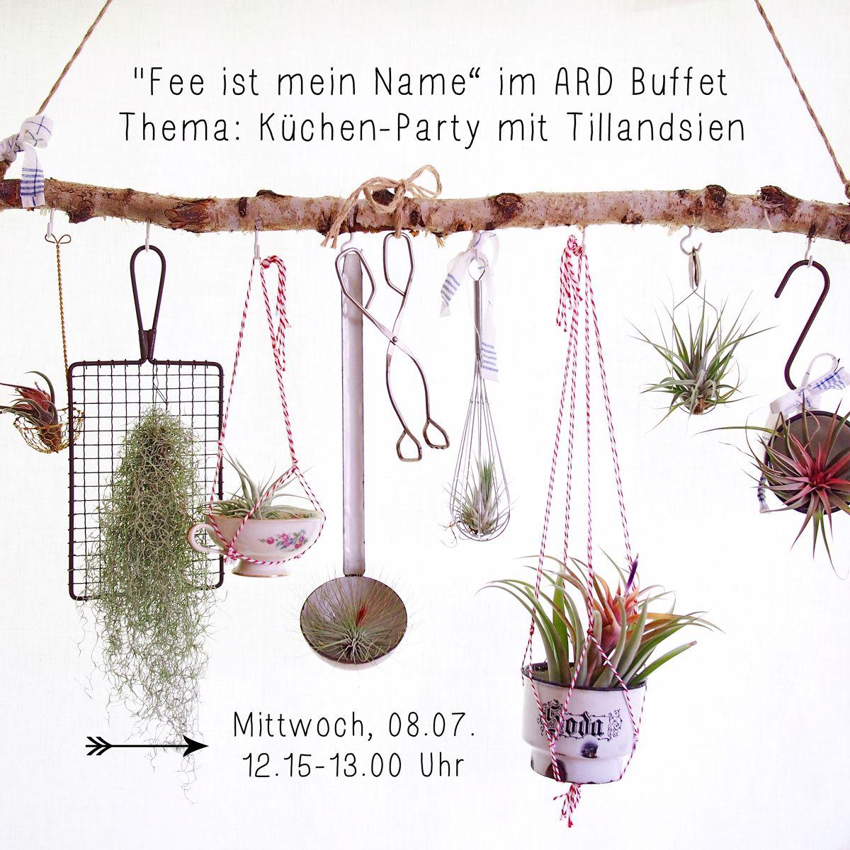 Ankündigung für einen Auftritt im ARD-Buffet mit Tillandsien-DIY - © Fee ist mein Name