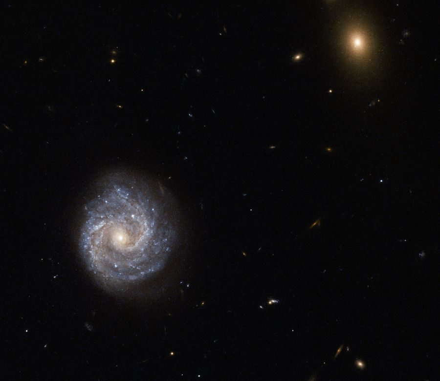 The Week S Coolest Space Photos Hubble Galaxy Images Galaxies