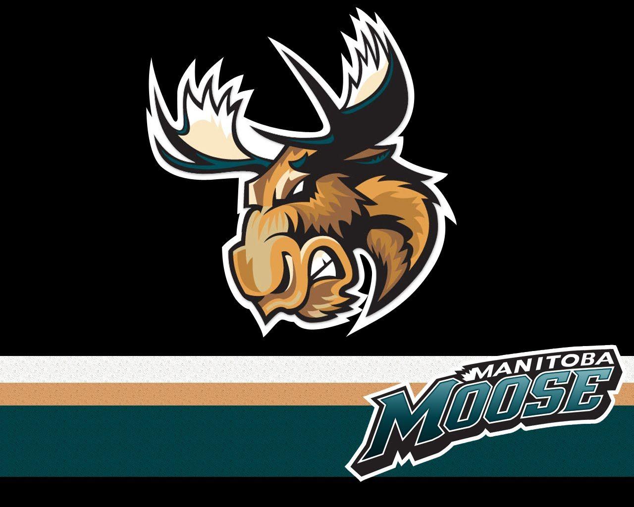 manitoba moose Manitoba Moose Game Today Moose logo