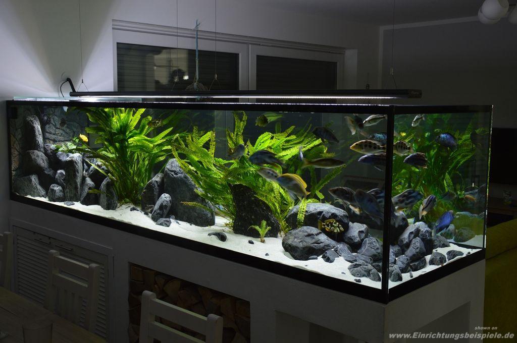 Related image aquarium pinterest aquarium einrichten for Aquarium modern einrichten