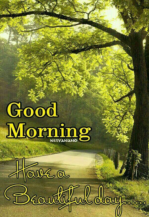 Good Morning | Good morning wednesday, Good morning quotes