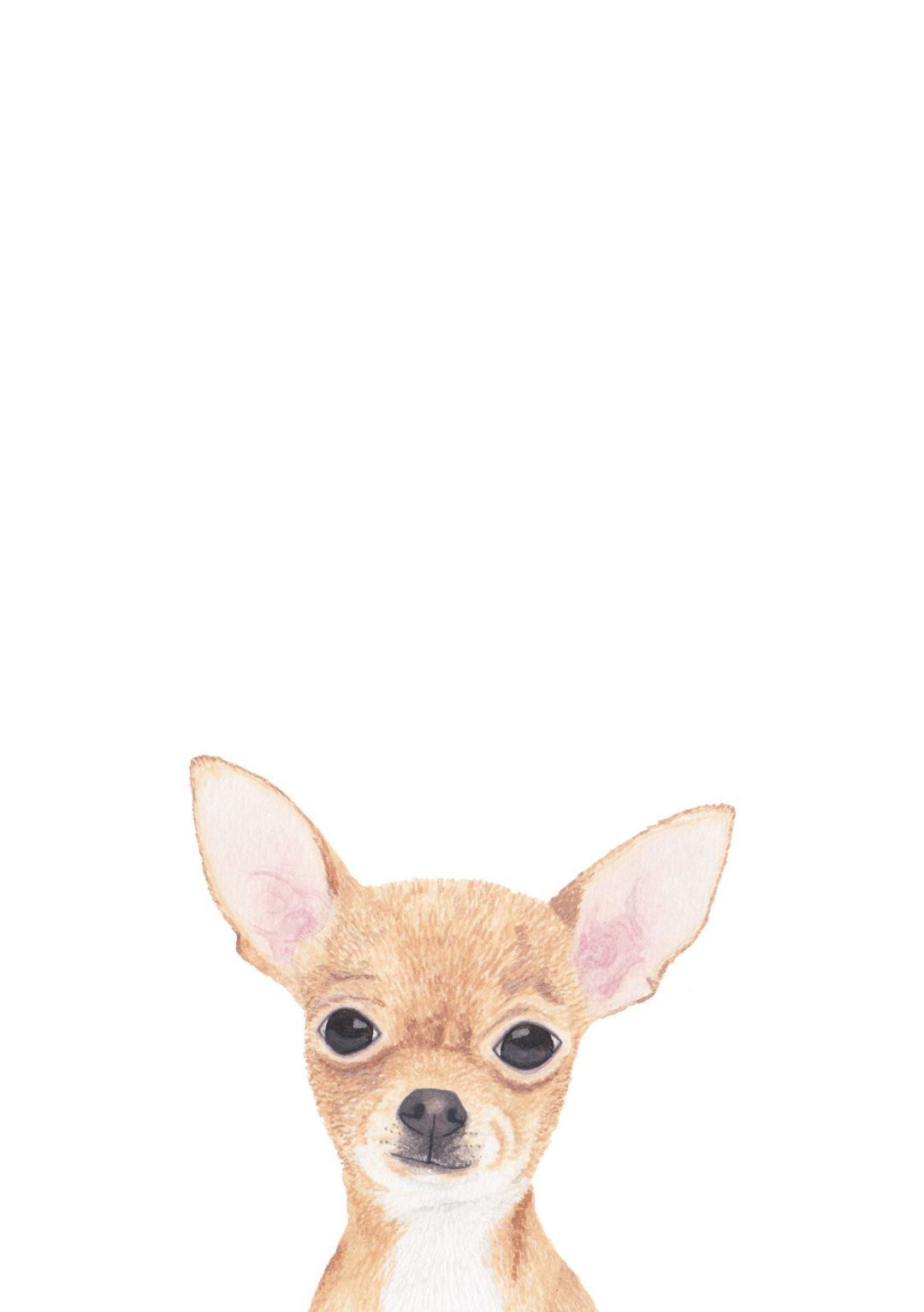 Chihuahua Android Iphone Desktop Hd Backgrounds Wallpapers 1080p 4k 103684 Hdwallpapers Androidw Chihuahua Art Chihuahua Drawing Chihuahua Tattoo