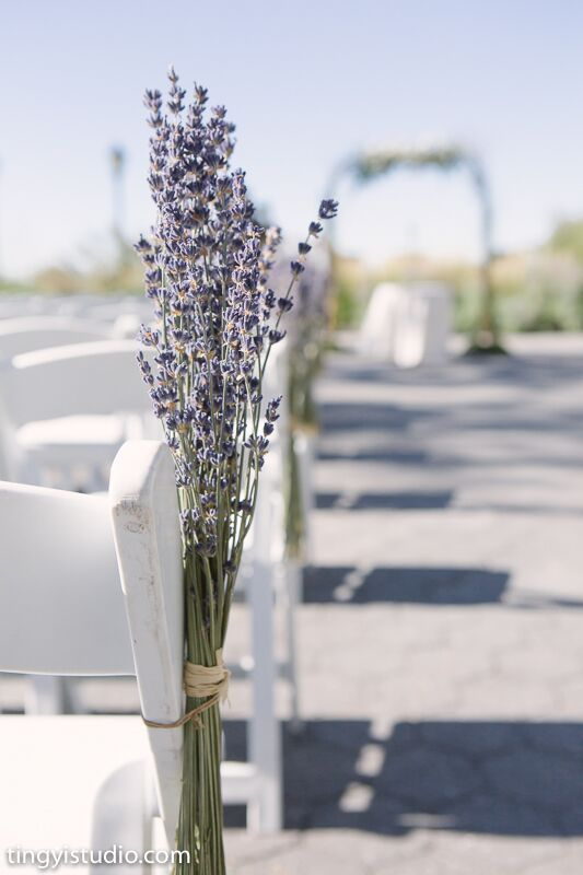 Lavender Chair Decor Aisle Wedding Ceremony Dried
