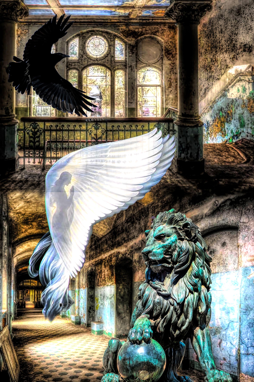 c4b46200b5bfe1218d126fcfce0e0c44 via Angel-Wings