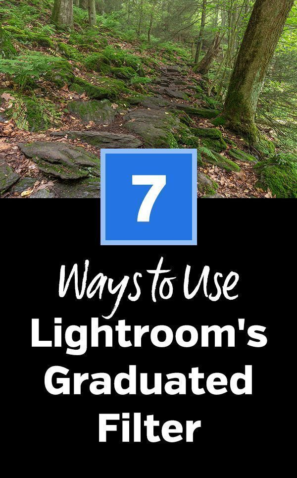 7 Simple Ways To Improve Landscape Photos With Lightroom's