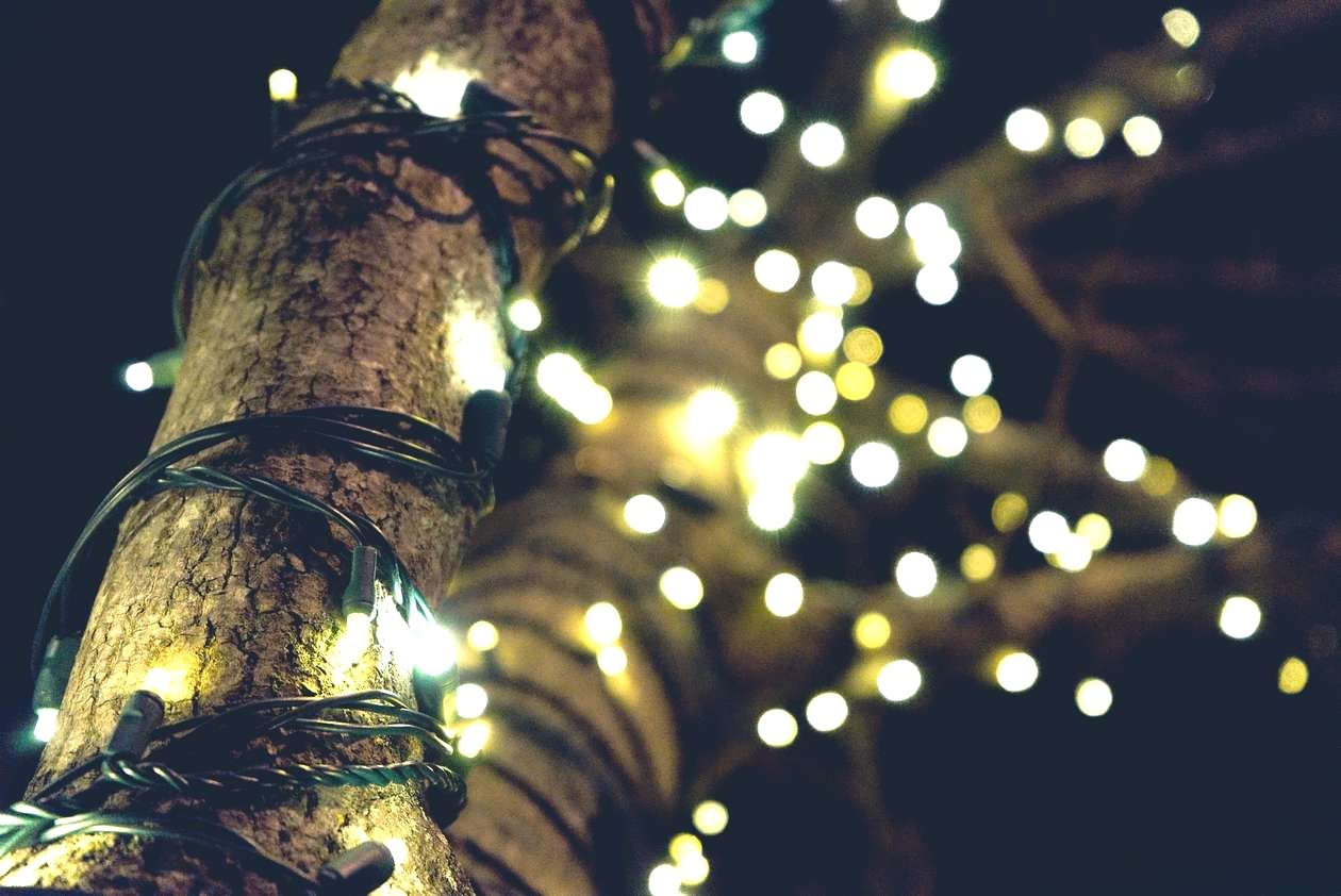 Home Improvement Decor Terrific Tips And Hints When Thinking About Christmas Lights On A T Question Improvment