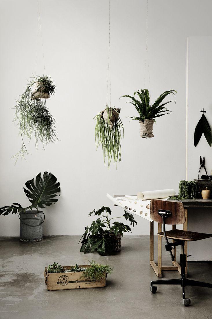 pin von maría gil auf jardinería | pinterest | pflanzen, Gartengerate ideen