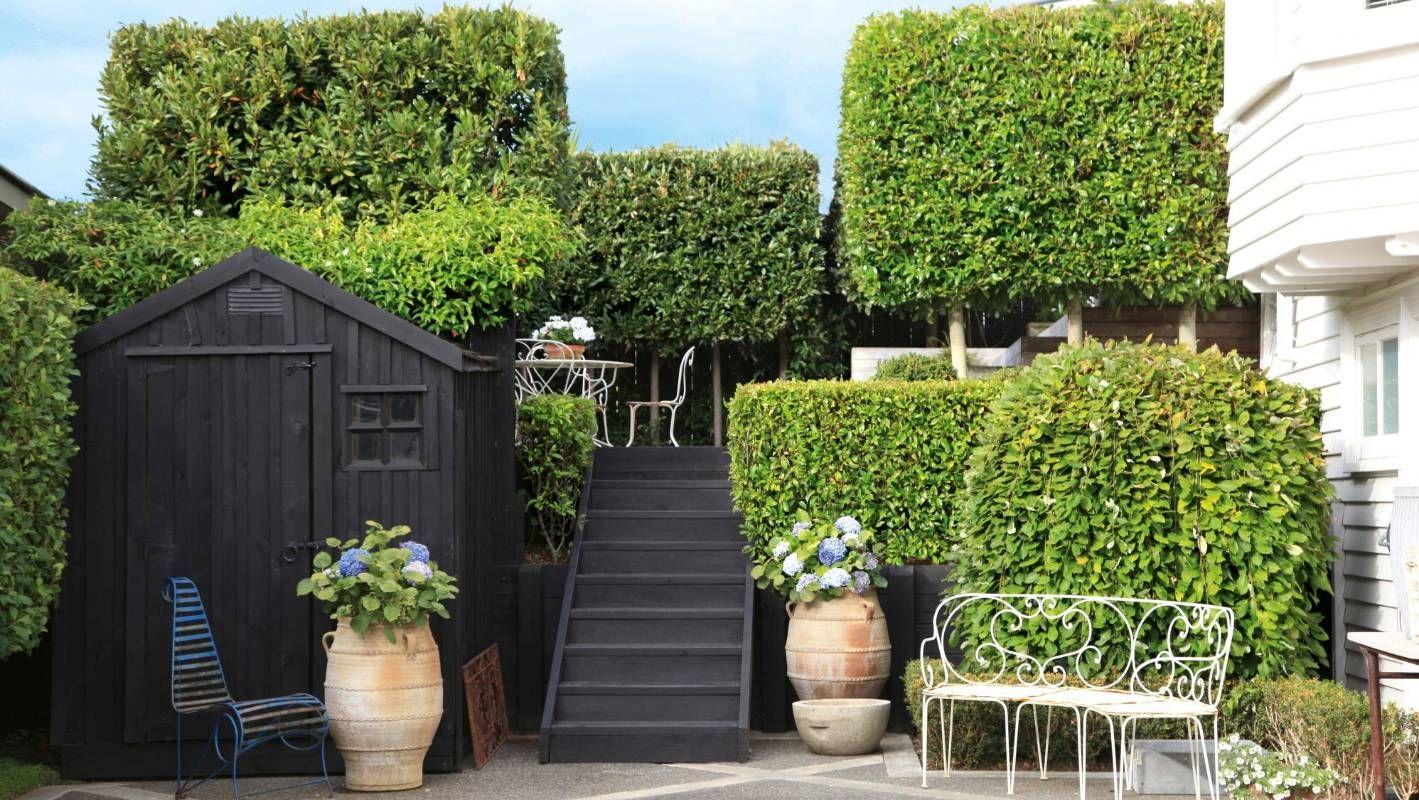 European garden in the heart of Auckland  European garden