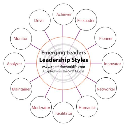 Emerging Leaders Official Leadership Style Guide, leadership - leadership essay example