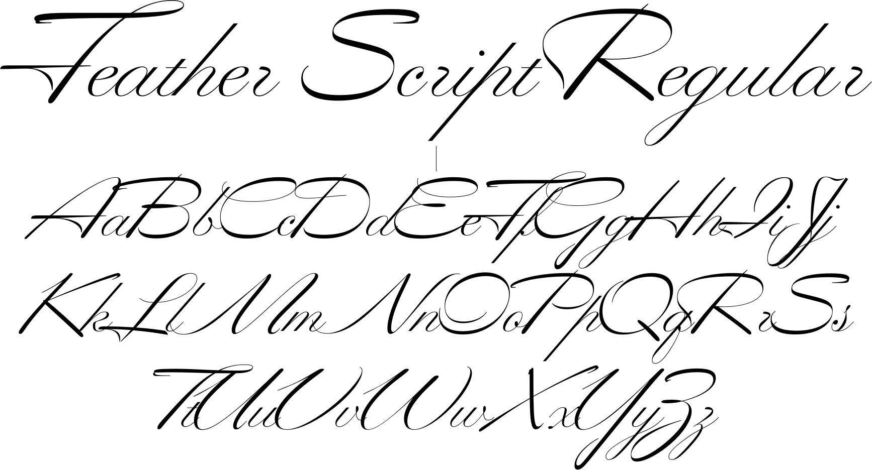 Feather Script Font
