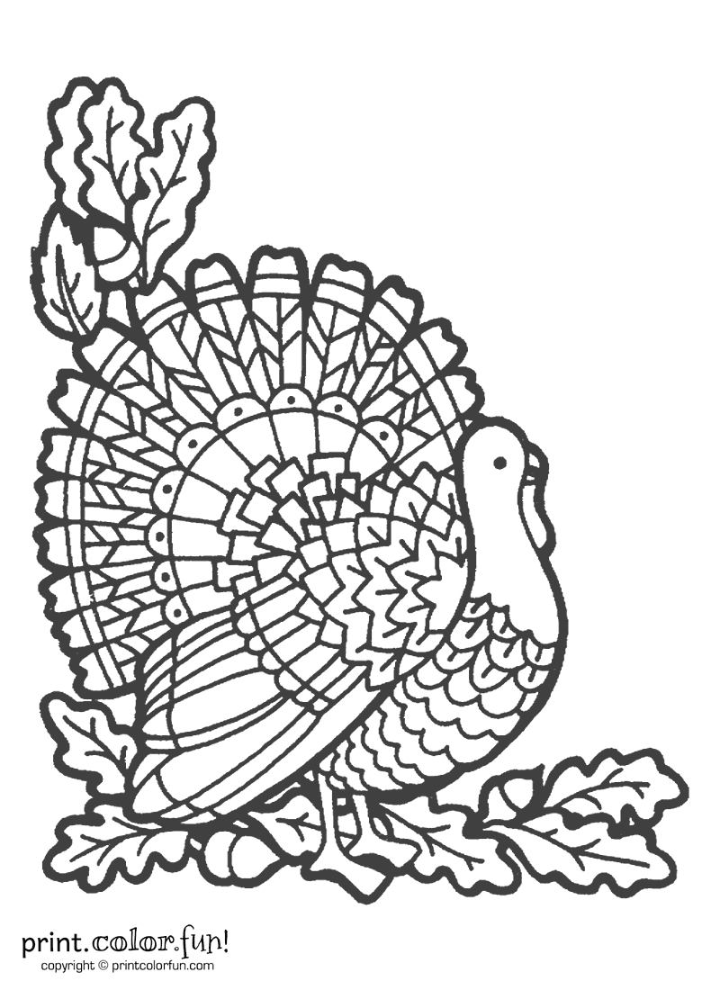 Printable Turkey Coloring Page Thanksgiving Coloring Pages Turkey Coloring Pages Thanksgiving Color