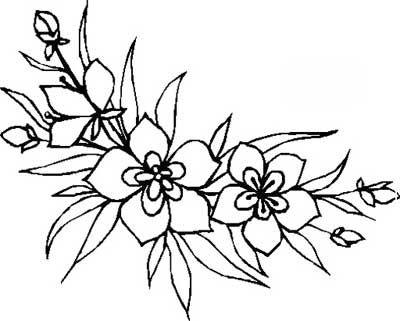 Dibujos De Flores En Blanco Y Negro. Fabulous Dibujos Flores Blanco ...