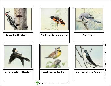 Free Downloadable Sets Of Bird Cards From The Burgess Book For Children There Are