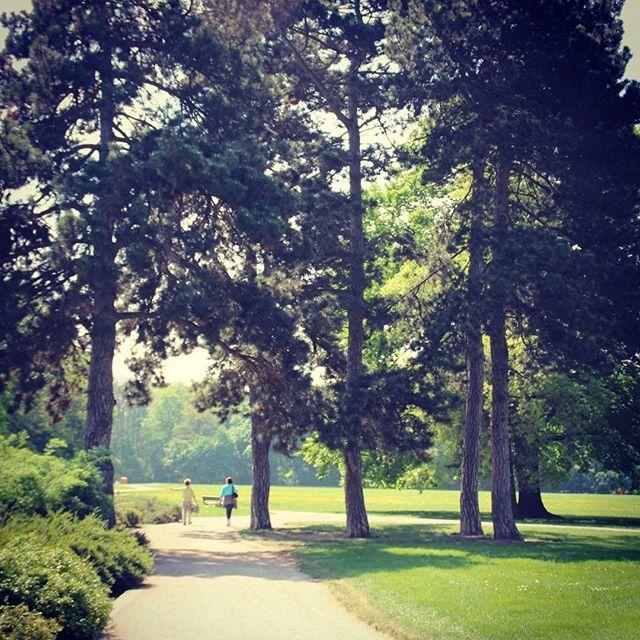 Im Rosental #nature #leipzig #park #thisisleipzig