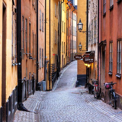 Stockholm Panoramic Tour - Stockholm Tours