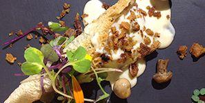 Patito polita Cucurucho de pan tostado relleno de manchons de pato, setas,crema de queso azul y crujiente de pato.