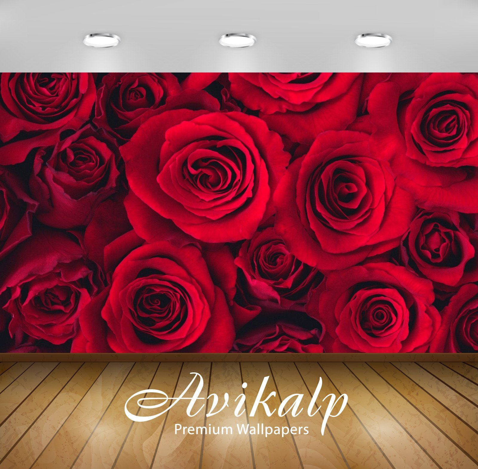Avikalp Exclusive Red Roses AWI1181 HD Wallpapers For