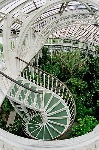 Royal Botanic Gardens, Kew -  Viktorianisches Gewächshaus gefüllt mit exotischen Pflanzen, Victorian greenhouses full of exotic plants