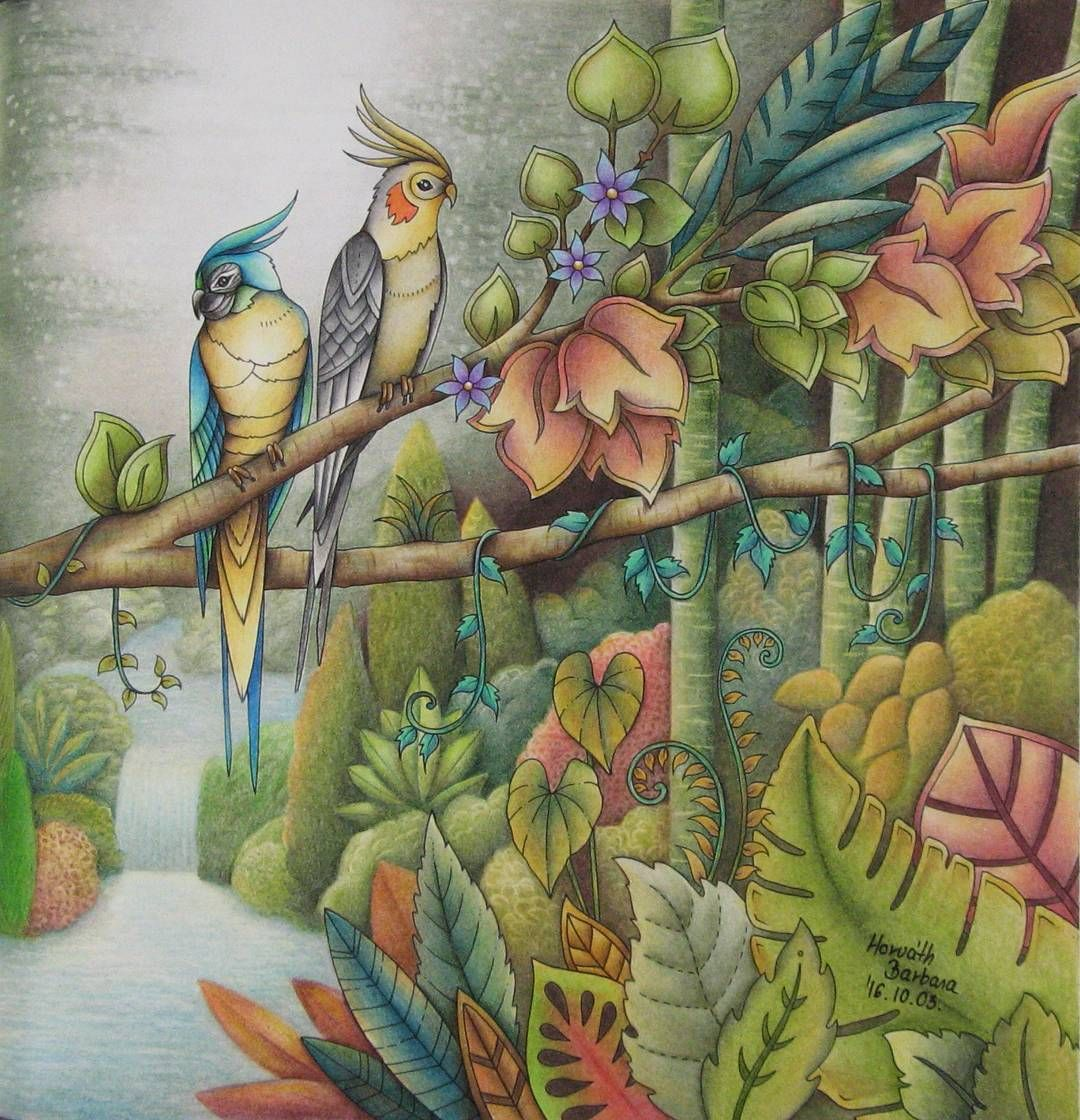 Pin By Rachel Wentworth On Coloring Magical Jungle