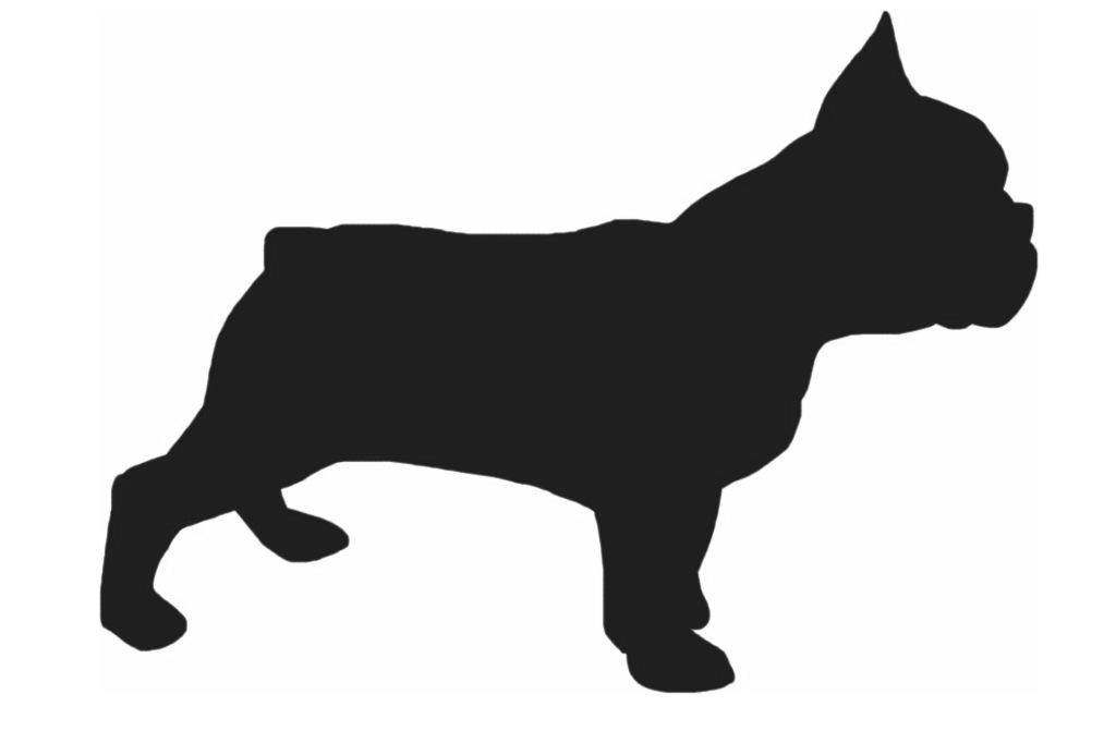 Rasinformatie French Bulldog Drawing Dog Silhouette Animal Silhouette