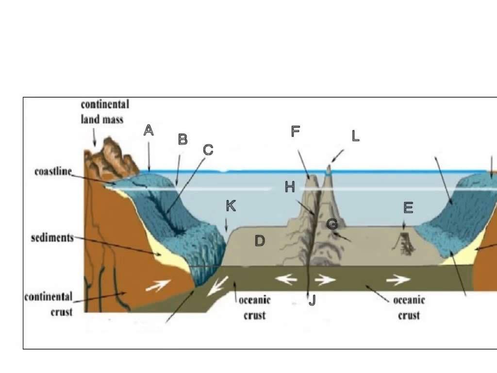 Ocean Floor Topography C1W18 Classical Conversations – Ocean Floor Diagram Worksheet