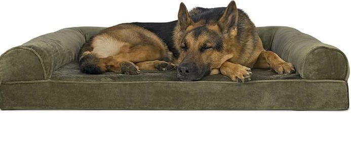 The 10 Best Dog Beds For 2019 Top 5 All Things Dawg Cool Dog