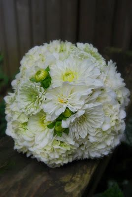 ...bride's bouquet created by The Clay Pot using white dahliahs and white hydrangeas...great summer bouquet!