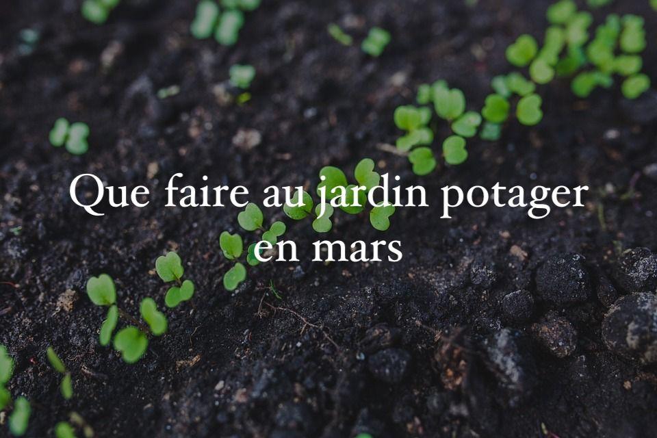 Que Faire Au Jardin En Mars Calendrier Du Jardinier Jardiner