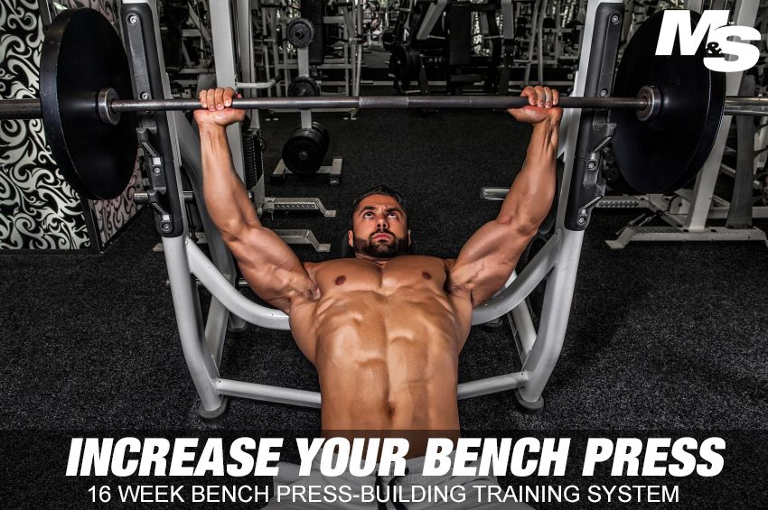 Massive Bench Press 16 Week Block Training Cycle Bench Press Workout Plan For Beginners Total Body Workout