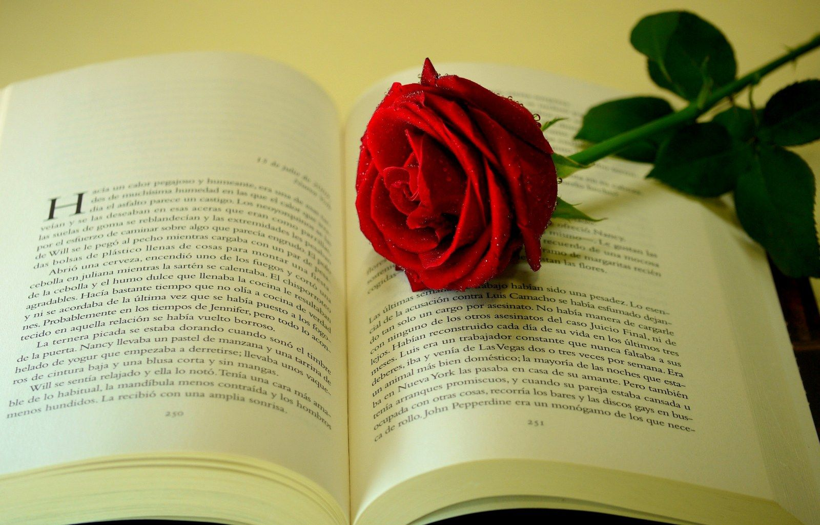 ƹ ʒ Book Wallpaper Love Wallpaper Book Girl