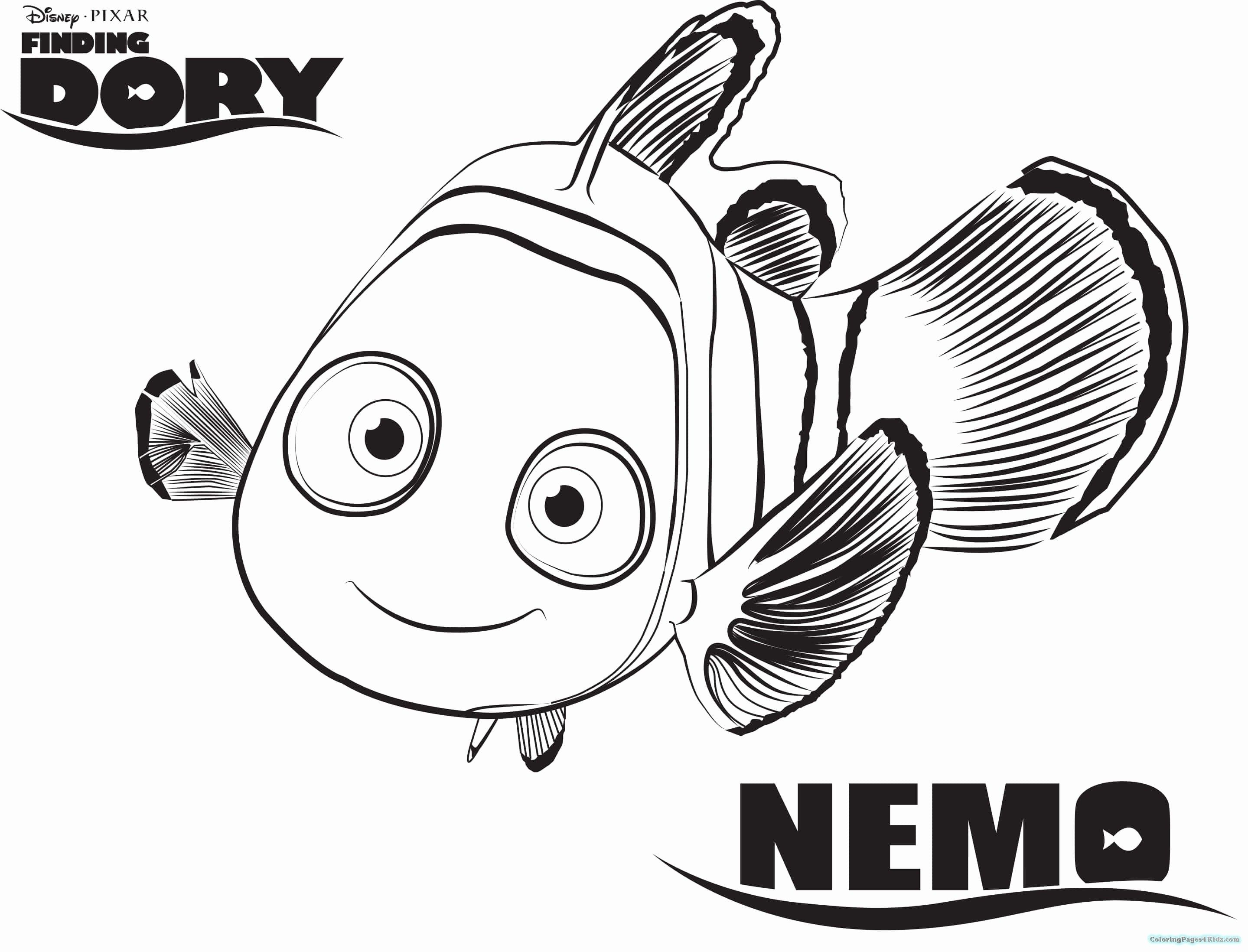72 Best Of Stock Of Finding Dory Coloring Pages Check More