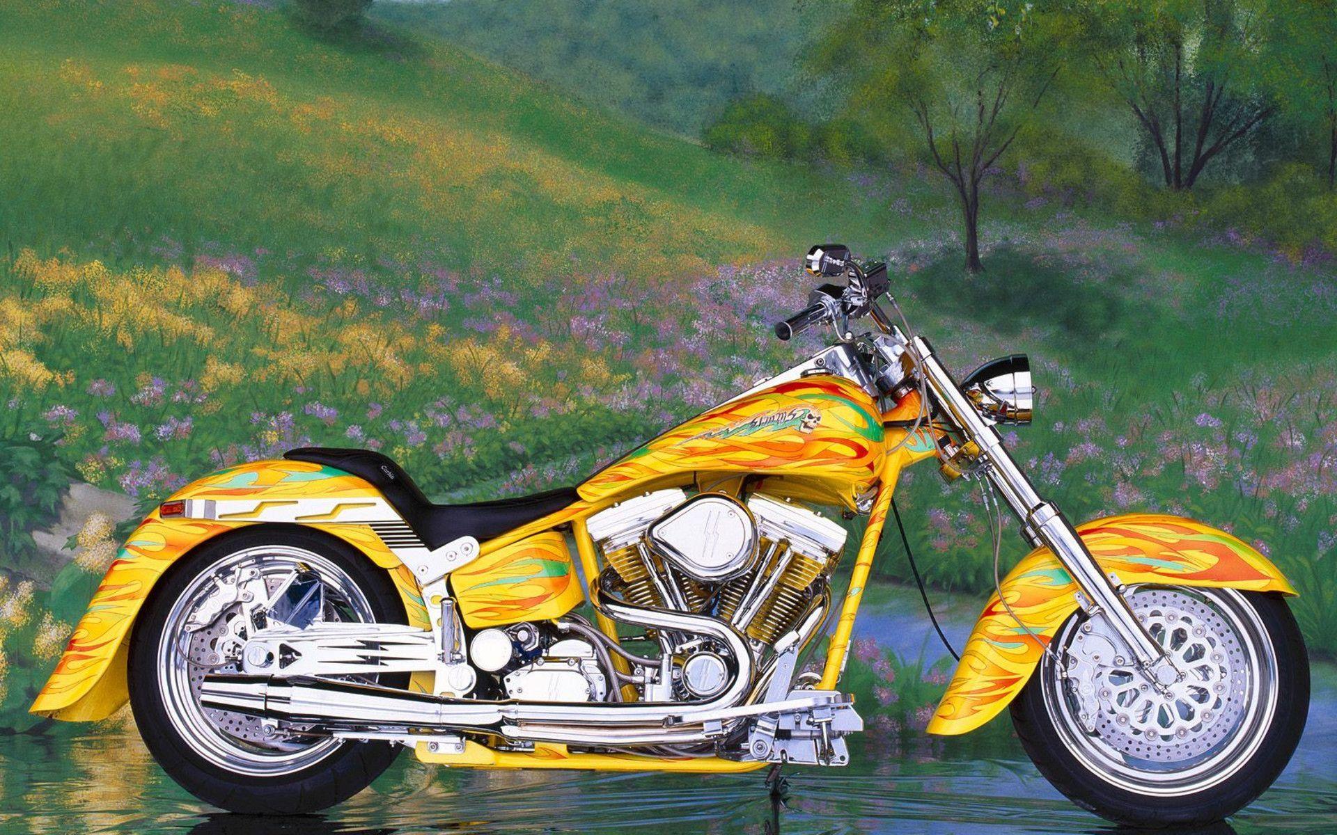 Custom Harley Davidson Motorcycles Custom Chrome Softail