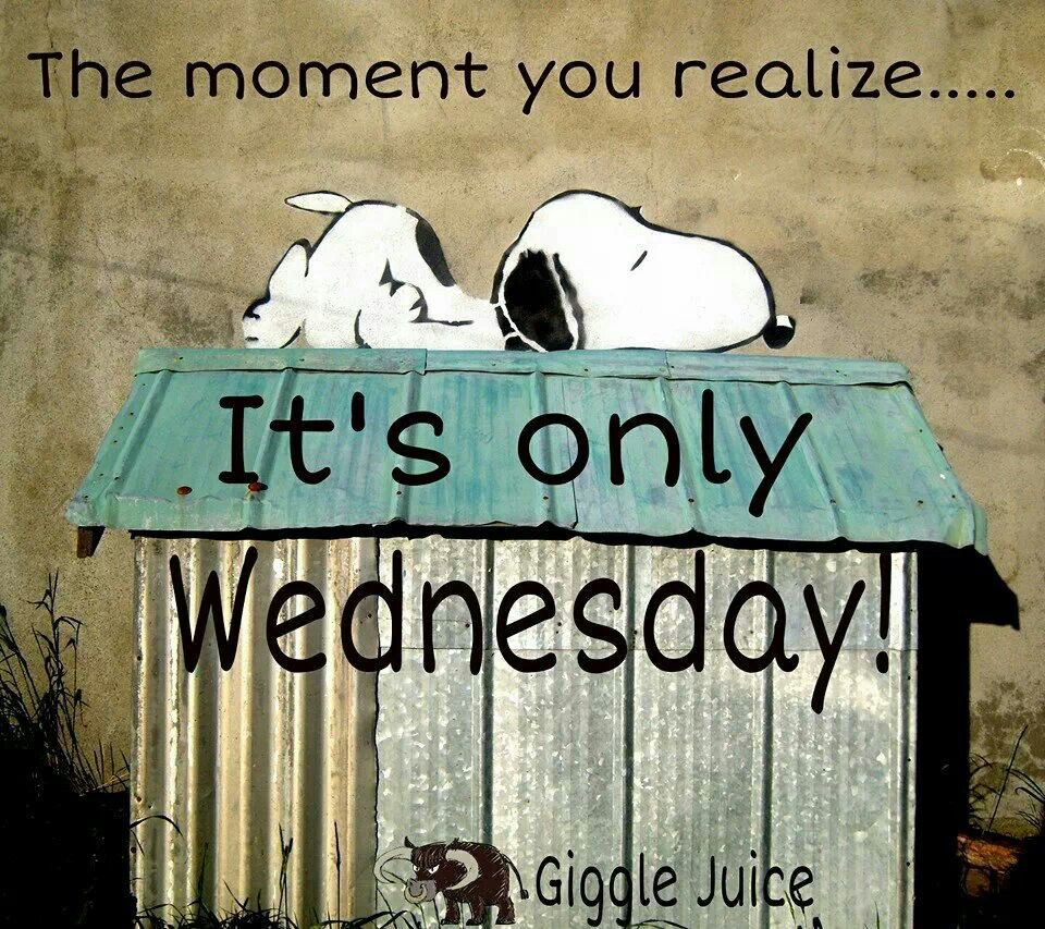 It's only Wednesday Funny day quotes, Snoopy quotes