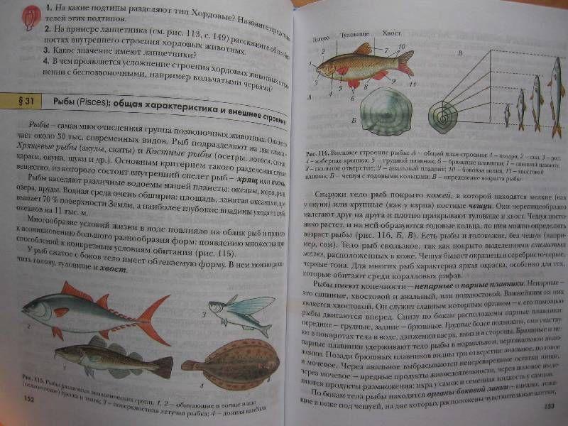 Гдз рабочая тетрадь по краеведению 5 класса козлов украинцева