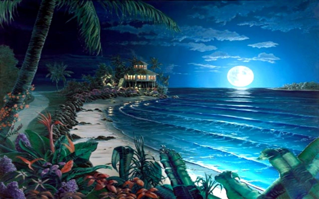 beach wallpaper luna cove beach moon night ocean free