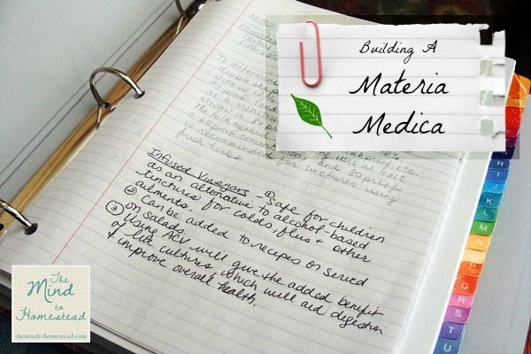Building A Materia Medica The Mind To Homestead Materia Medica