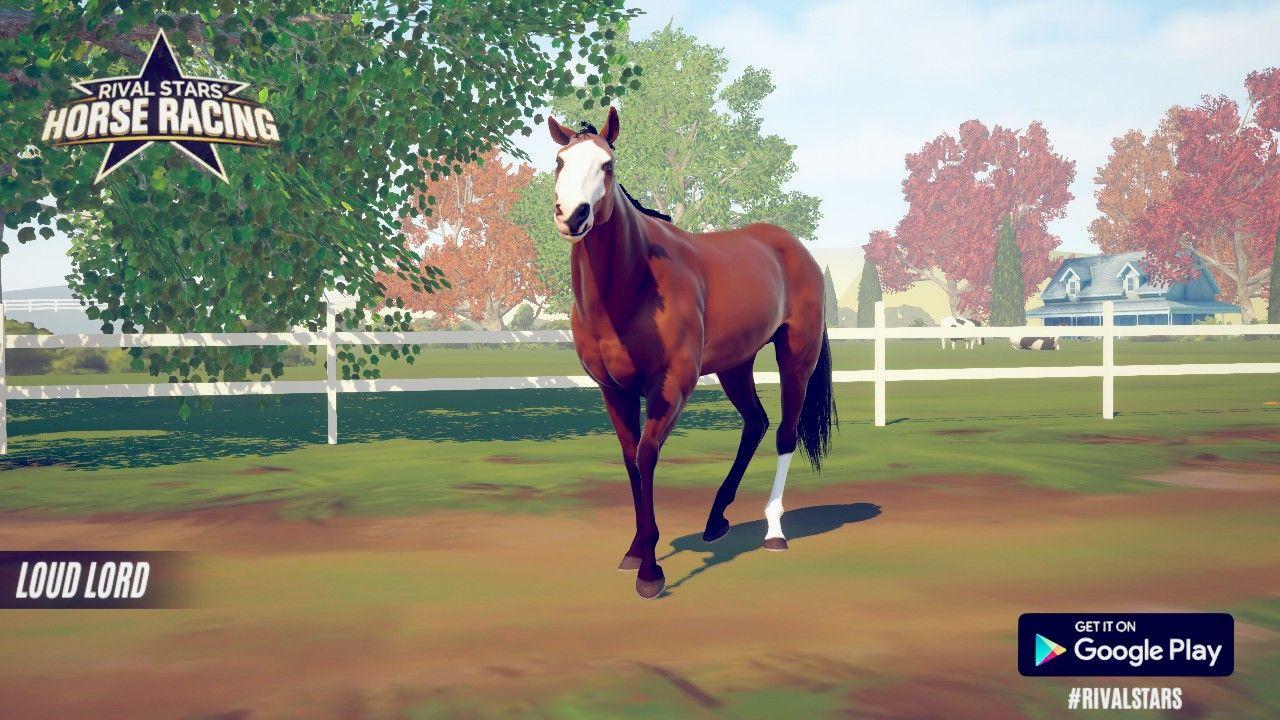 Pin by Julia Szweda on horse game in 2020 Horses, Horse